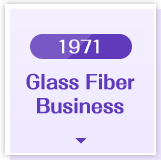 1971 Glass Fiber Business