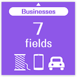 Businesses 7 fields
